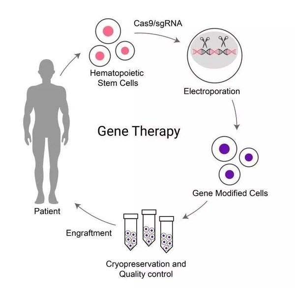 基因治疗原理