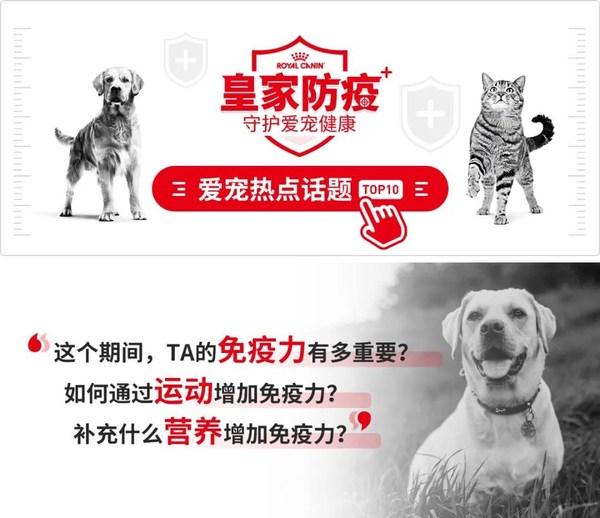 """皇家宠物食品官方双微开设""""皇家防疫专栏"""""""