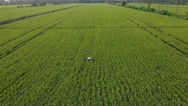 遥感无人机拍摄高清农田地图