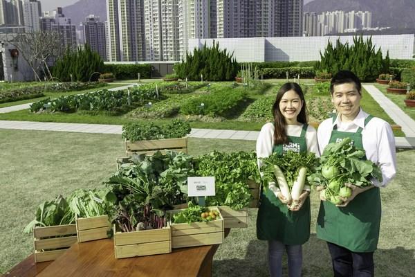 「一喜种田」现正于全港营运六个城市农庄,遍及信和集团旗下商业和住宅项目以及酒店。